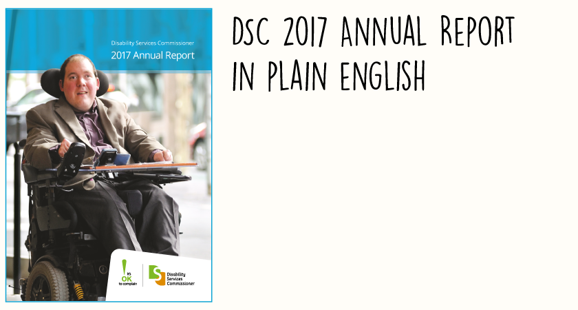 DSC 2017 Annual Report in Plain English